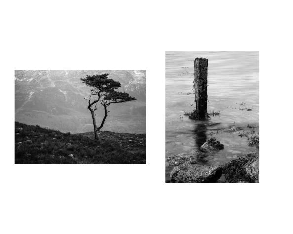 Form and Shape 1